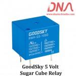 GoodSky RWH-SH-105D 5 Volt Relay